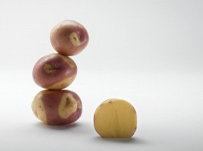Maison Bayard - Pommes De Terre Miss Blush
