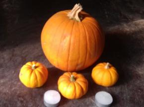 Multiproductions - Cédric Joliveau - Panier de Courges 100% Halloween