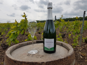 Champagne Deneufchatel - Champagne Deneufchatel Brut Tradition 1 X 75 Cl