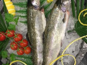 Poissonnerie Le Marlin - Truite - 500g