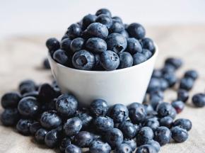 La Ferme des petits fruits - Myrtilles BIO - 9 Kg