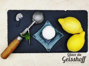 Glace du Geisshoff - Citron Jaune Crème Glacée Fermière au Lait de Chèvre 750 ml