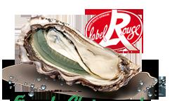 Les huîtres Gaboriau Frères - 24 Huîtres Fines De Claire Verte Label Rouge