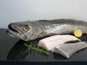 Pêcheries Les Brisants - Dos de Merlu - Peau - Lot de 1kg