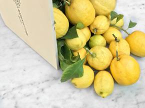 La Maison du Citron - Coffret 4,5 Kg Citrons De Menton Igp Bio