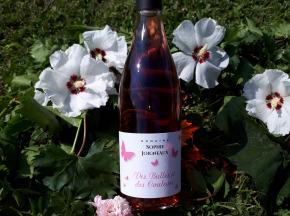 Domaine Sophie Joigneaux - IGP Rosé Sainte-Marie la Blanche 6x75cl Millésime 2018