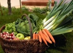 Au bon Jardinet - Panier De Légumes Frais D' Hiver 15 Kg + Cadeau offert
