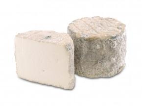 BEILLEVAIRE - Bonde de Gâtine