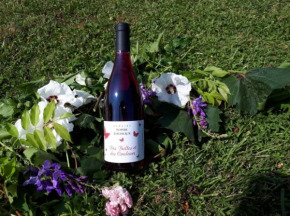 Domaine Sophie Joigneaux - IGP Rouge Sainte-Marie la Blanche 3x75cl Millésime 2018