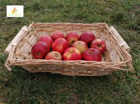 Au bon Jardinet - Délicieuses Pommes Jonagold X 3 Kg