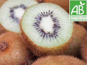 Mon Petit Producteur - Kiwi Hayward Vert [vendu Par 10]