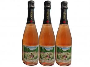 Champagne J. Martin et Fille - Cuvée Des Amoureux De Peynet Brut Rosé X3