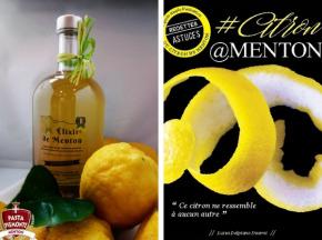 PASTA PIEMONTE - Panier Decouverte Citron De Menton