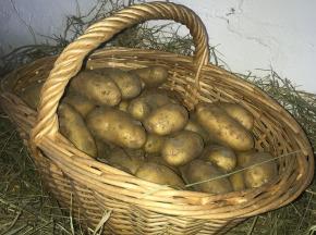 Valentin Grain - Fruits et légumes Conversion Bio - Pomme De Terre  2 Kg