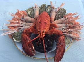 AQUADIS NATURELLEMENT - Plateau De Fruits De Mer 71 Degrees West - Homard Canadien Env 2kg
