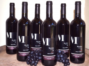 Didier Goubet - Merlot Bio - Vin De France Carton De 6