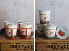Ferme Chambon - Yaourts au Lait Cru de Vache et aux Fruits (Fraise) x8