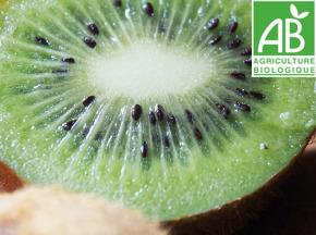 Mon Petit Producteur - Kiwi Hayward Vert [la Pièce De 90g]