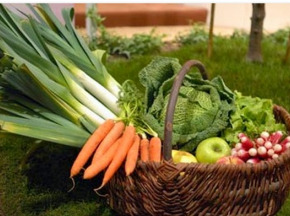Au bon Jardinet - Panier De Légumes De Printemps 16kg