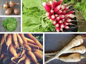 Multiproductions - Cédric Joliveau - Panier de Légumes de Saison