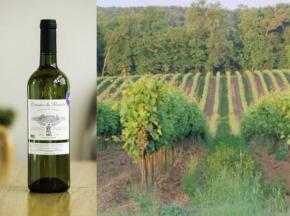 PinotBleu - Coffret de 6 Entre-Deux-Mers Haut-Benauge AOC Bio, Cuvée Des 3 Journaux, Domaine de Bourdieu, millésime 2016
