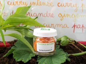 HERBA HUMANA - Paprika Intense Bio Cultivé en France 5 g