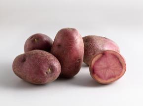Maison Bayard - Pommes De Terre Mulberry Beauty