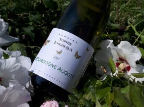 Domaine Sophie Joigneaux - AOP Bourgogne-Aligoté Millésime 2017