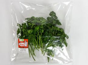 La Boite à Herbes - Persil Frisé Frais - Sachet 50g