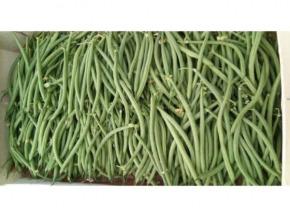 Valentin Grain - Fruits et légumes Conversion Bio - Haricot Vert Bio 1kg