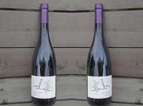 """Domaine Doriane Vidal - Lot De 6 Bouteilles Aoc Côtes Du Roussillon Villages Rouge """"cuvée Anne"""" 2015, 14%vol"""