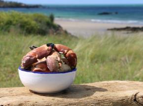 Ô'Poisson - Pinces De Crabe Cuites - 300g
