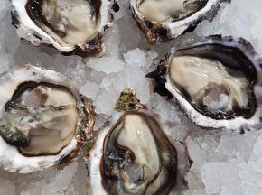 Camargue Coquillages - La Perle De Camargue Huîtres Creuses N°3 Bio - 15 Kg