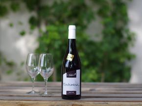 Domaine de l'Ambroisie - L'enchanteur 2018 AOC Côtes de Toul