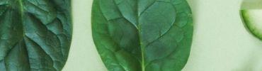 Nos promotions sur les fruits et légumes