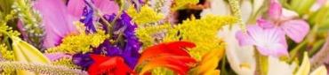 Nos Fleurs Fraiches Comestibles