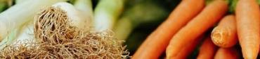 Nos Légumes pour les fêtes