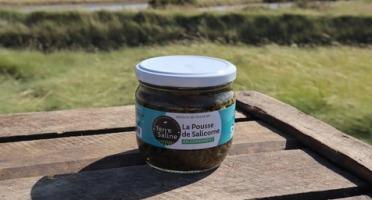 LA FERME DES BALEINES - Pousse De Salicorne Bio En Condiment - 130 G - Terre Saline