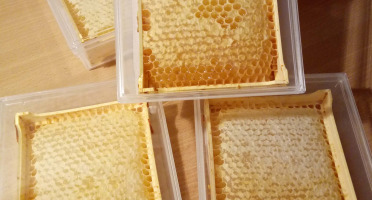 Miel et Pollen - Miel En Rayon - Gateau De Miel