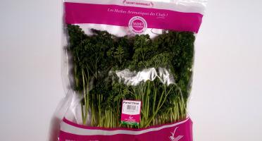 Les Herbes du Roussillon - Persil Frisé Frais - 500g