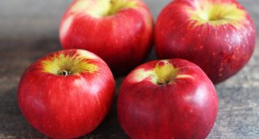 La Boite à Herbes - Pomme Akane Bio - 1kg