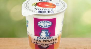La Ferme de Viltain - Yaourt Mangue x 9
