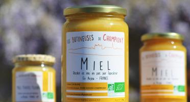 Les Butineuses de Champigny - Miel toutes fleurs bio - 1000 g
