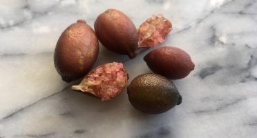 Le Jardin des Antipodes - Citron Caviar Aux Perles Rose Foncé  100g