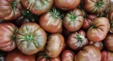 Le Châtaignier - Tomates noires de crimée - 1 kg