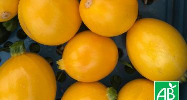 Micro-Ferme de Carcouet - Courgettes ronde et jaune Bio - 1 kg