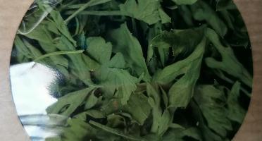 Les Jardins du Mas de Greil - Persil Plat En Sec