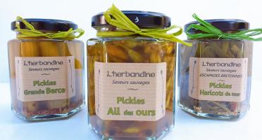 L'herbandine - Trio de Pickles Sauvages – Grand  Format