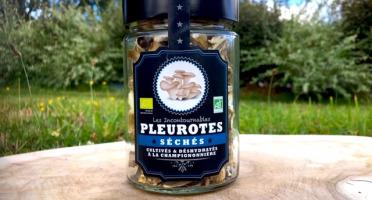 Les champignons du Loc'h - Pleurotes bruns Bio séchés - 25g