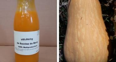 Multiproductions - Cédric Joliveau - Velouté de Courge Sucrine du Berry : 1 bouteille d'un litre